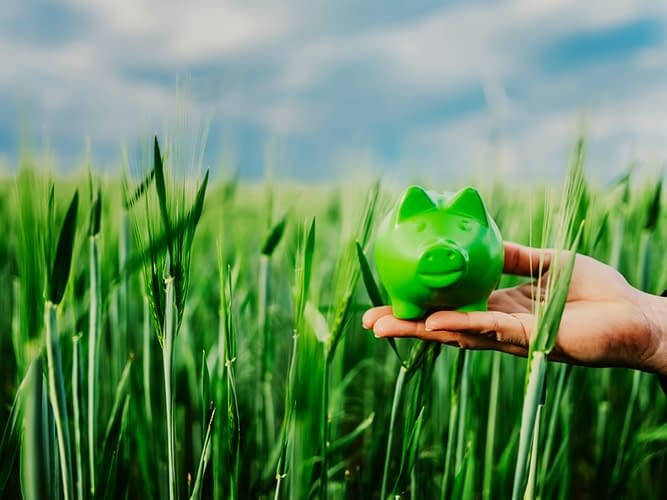 Image of a hand holding green piggybank in a green field.